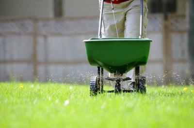 types-of-grass-fertilizer-types-of-grass-fertilizer